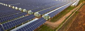 photovoltaique-propriété-foncier